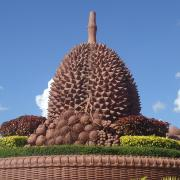 Kampot city